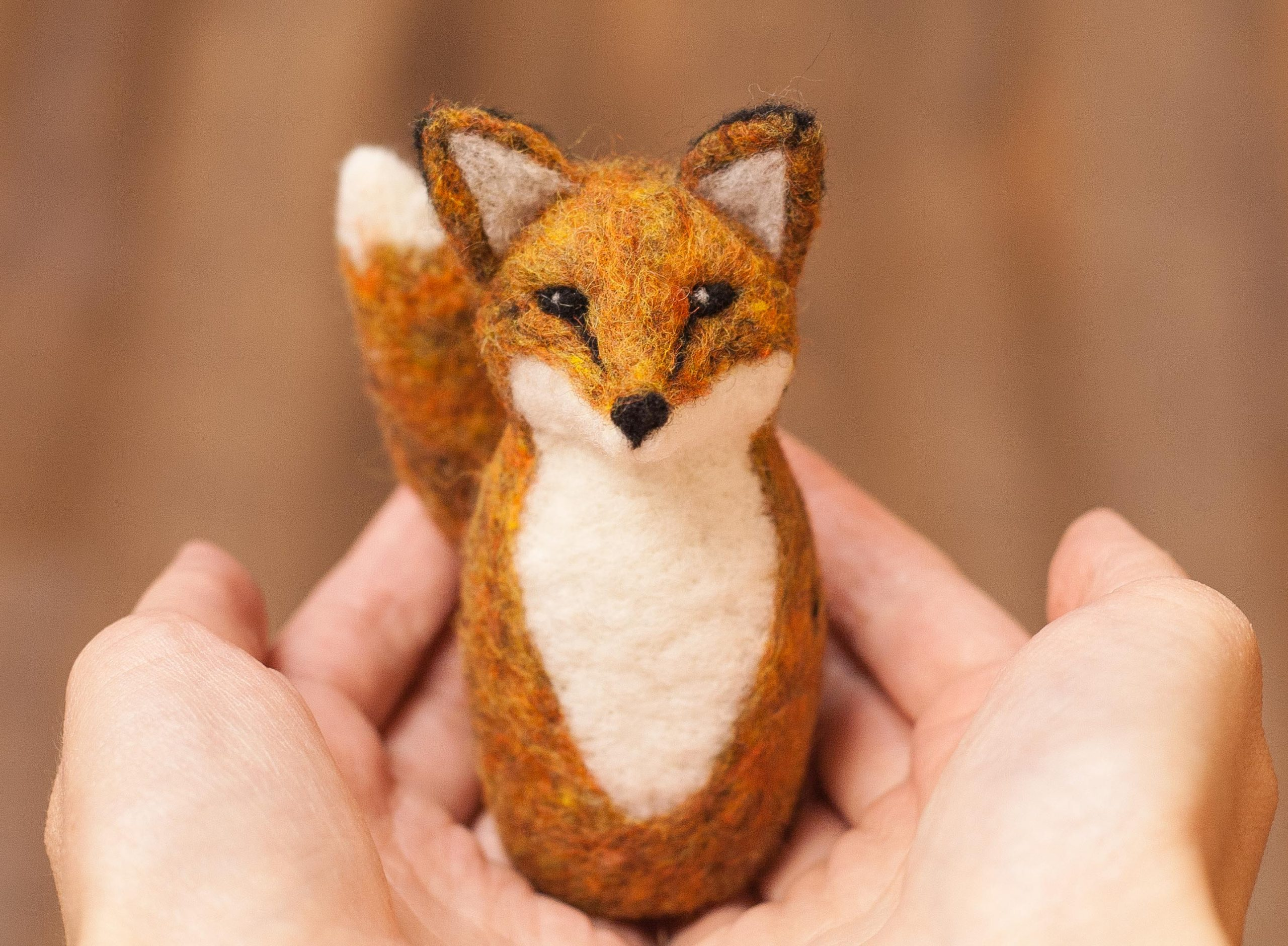 redfoxkit_listing1-scaled